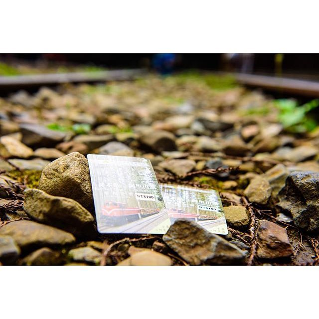 【sun_shine_star68】さんのInstagramをピンしています。 《Wonderer. 👻 #tbt #photography  #summer #memories #couplegoals #asiancouple #food #foodiegram #taiwan #traveler #fff #f4f #like4like #summer #forest #mtAlisha #railway #watchthisinstagood #instagood #instaoftheday #写真好きな人と繋がりたい #写真撮ってる人と繋がりたい #写真好き #夏の思い出 #2人旅行 #カップル  #台湾 #学生カップル #森 #鉄道》