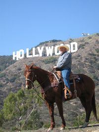 Los Angeles Horseback-Riding Tour to the Hollywood Sign #anaheim #california
