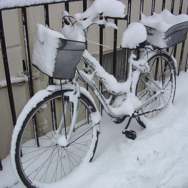 """Snow covered bicycle"" by Cath - £1"