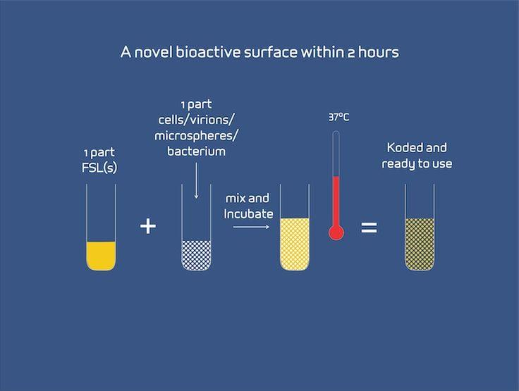 KODE Biotech - Home