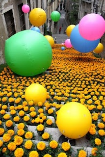 #Girona, Temps de flors
