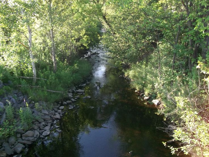 ruisseau rouge...........red stream (Magog,Quebec,Canada)