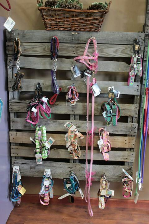 pet boutique display ideas | Skid on wall with hooks screwed in for collar and leash display