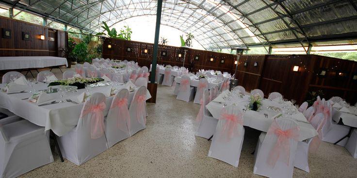 Amore Gardens, Currumbin Valley - Gold Coast Reception Venues