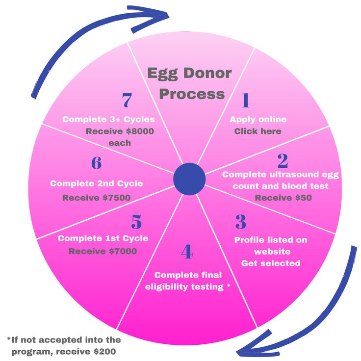 how to become an egg donor
