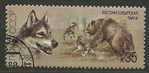 ZSRR, 1988, Mi 5831, East Siberian Laika (Canis lupus familiaris), #468, CTO | eBay