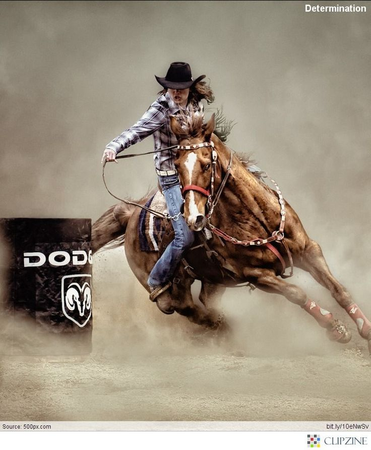 I want to learn how to barrel race again. It's been to long & sure it'll come back like riding a bike