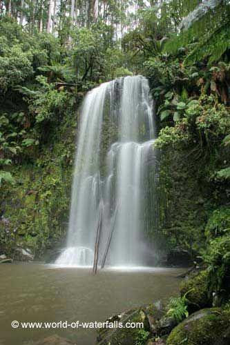 Beauchamp Falls  Great Otway National Park, Victoria, Australia