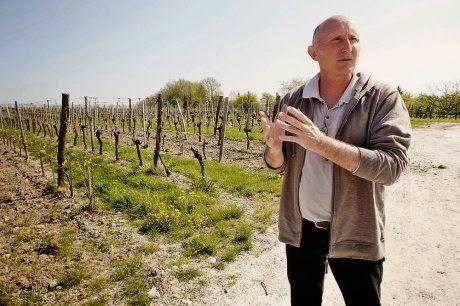 Discover Vin: Luc de Conti - Organic Wine Maker