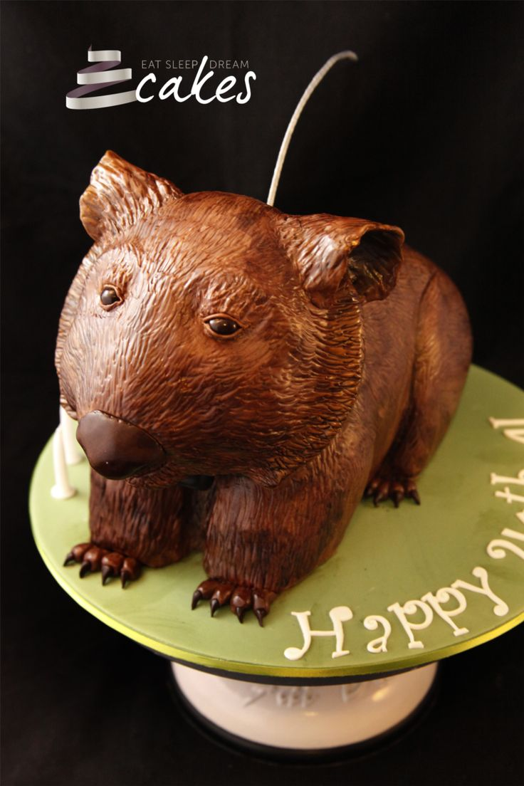 Wombat cake complete with GPS tracker for a researcher's 40th birthday