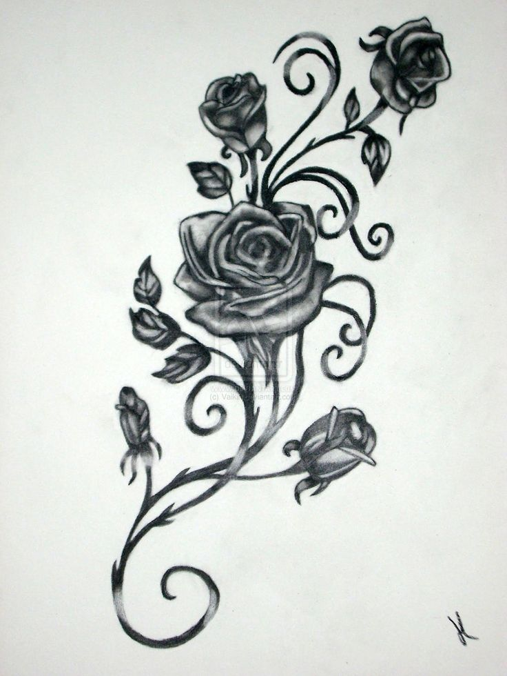 Gothic Rose Vine Tattoo Black Rose Tattoos Designs For | Pattern ...