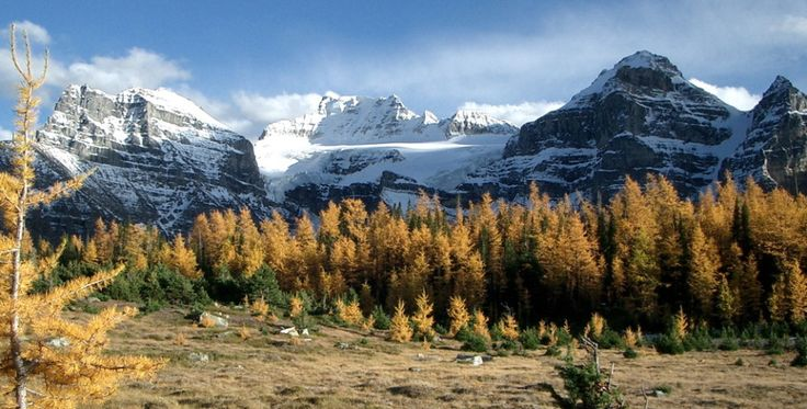 7 Hikes To See The Larches And Beat The Crowds