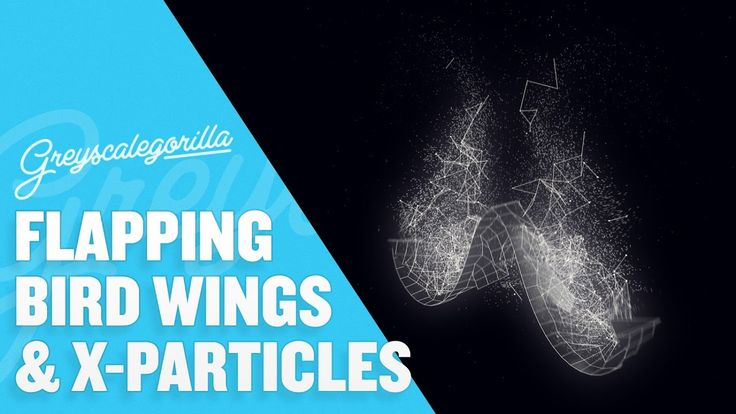 Cinema 4D - Animate A Flapping Bird Wing with Joints in Cinema 4D