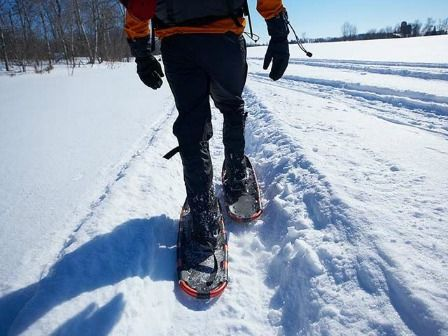 Snowshoe in Minnesota State Parks