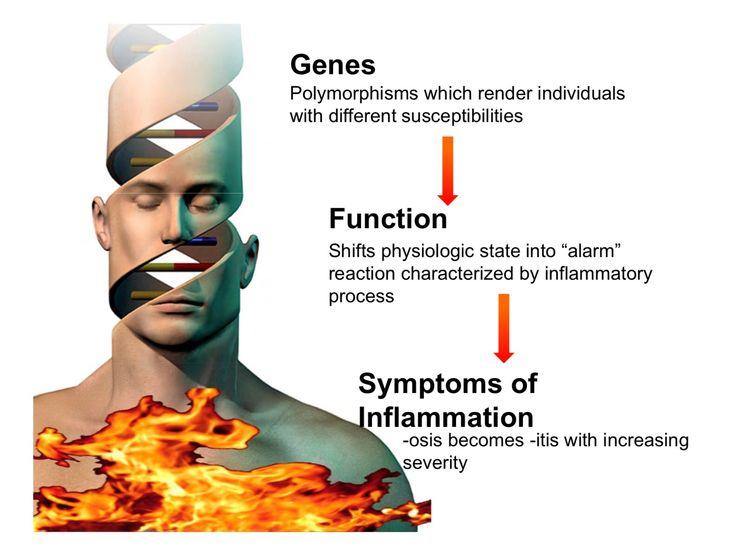 A imunidade é um sistema extremamente complexo, onde estão envolvido desde a susceptibilidades genéticas, e a individualidade metabólica, porém  existem alguns fatores que vão ser o gatilhos para que os distúrbios imunes  ocorram como:  ✔️ Micro organismo (bactérias, vírus, fungos) ✔️ Traumas físicos (acidentes, cirurgias) e emocionais (stress) ✔️ Toxinas (cigarro, poluição, agrotóxicos, etc)  ✔️ Falta de nutrientes ( vitaminas, minerais, aminoácidos, antioxidantes)  ✔️ Alimentos…