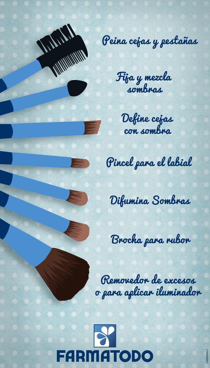 Utilidad de cada brocha de maquillaje #Belleza #Maquillaje