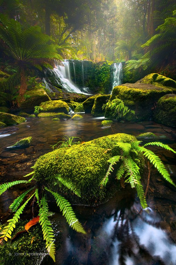Horseshoe Falls by Jarrod Castaing (Mt Field National Park, Tasmania, Australia)
