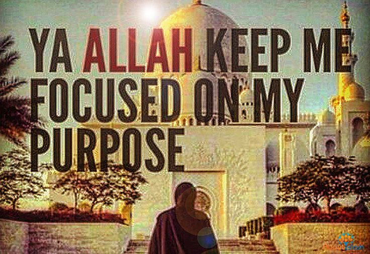 Ya Rabb, help me be a strong and knowledgeable Muslim so I can spread the beautiful truth of Islam. ❤️️