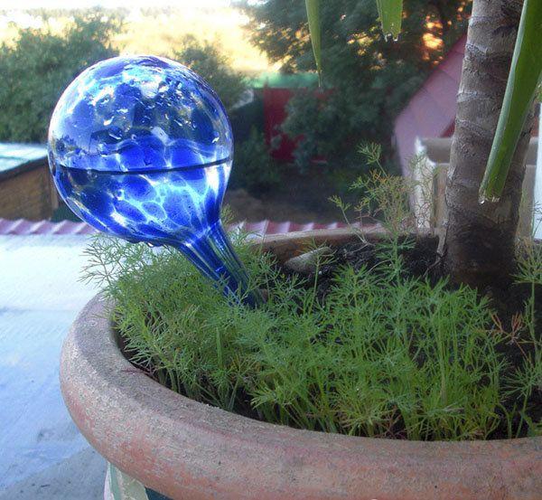 2pcs 200ml Blue Auto Watering Glass Ball Flower Plant Drip Irrigation Controller