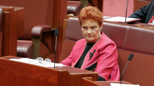 Senator Pauline Hanson declares she is no racist, but she's fed up with her own tolerance. WTF don't you get about how self-condemning that statement is.