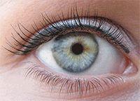 adding/filling in eyelashes naturally