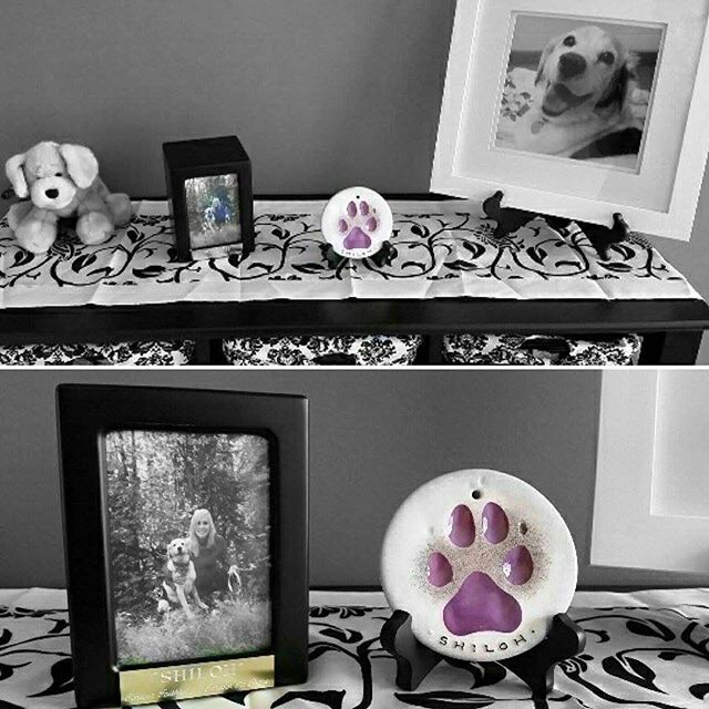 This lovely display is for Amy's beagle Shiloh. What a wonderful way to remember a beloved member of your family. Thanks Amy for letting us share your photo! #memories #doglove