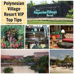Top Tips for the Polynesian Village Resort at Walt Disney World - Travel like a VIP with these tips and hacks