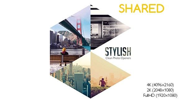 Videohive - Stylish Photo Openers - Logo Reveal 11856111 - Free Download