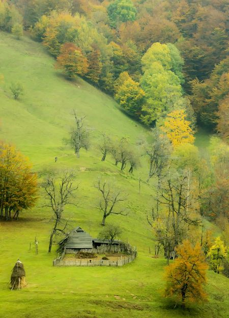 Oh, how I miss u, my green Romania!