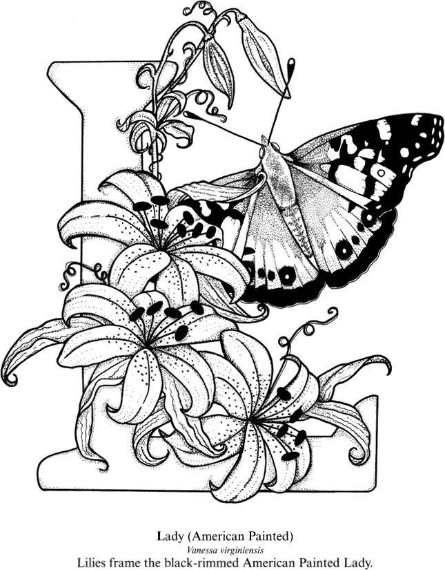 Best 25 Butterfly Design Ideas On Pinterest