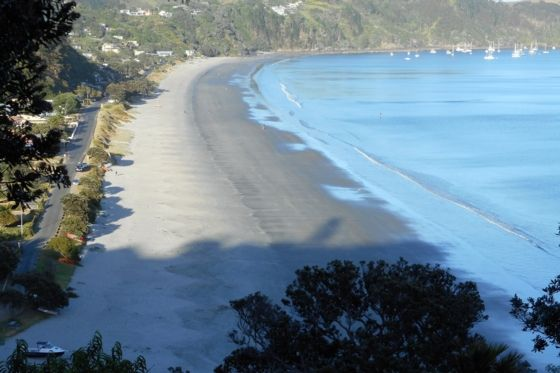 Onetangi Beach from track - Onetangi apartment
