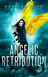 Angelic Retribution: Book 3 (Afterlife)