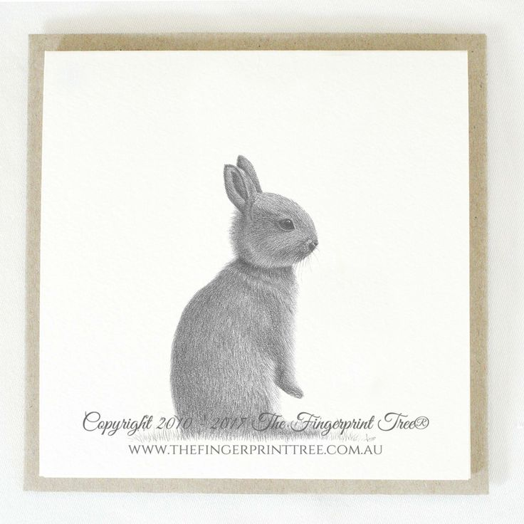 Gift card - Rabbit:  Cards! by The Fingerprint Tree® is our couture range of gift cards featuring illustrations by Ray Carter, Chief Artist & Founder.  Made-to-order and Giclée printed at our Southern Highlands studio.   We sell direct to the public and to retailers.