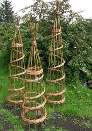 willow plant supports - Google Search