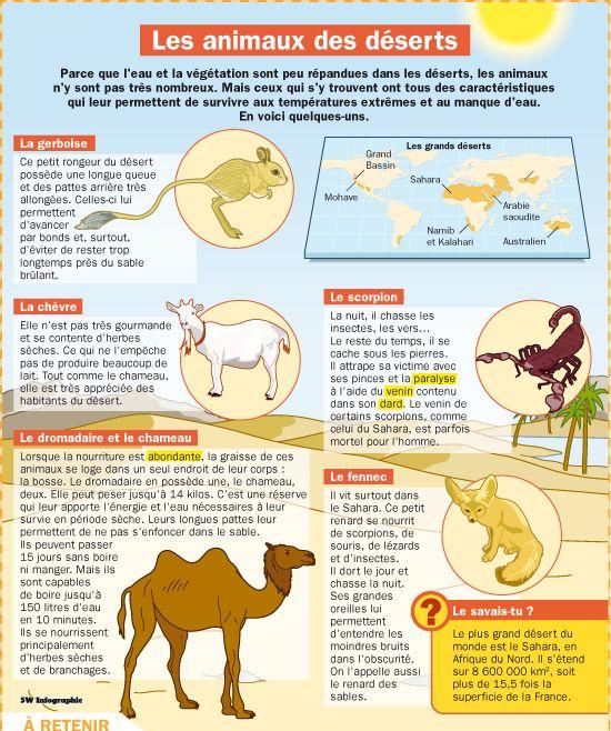 Fiche exposés : Les animaux des déserts