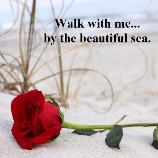 114 best romantic myrtle beach images on pinterest   myrtle beach, Ideas