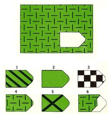 Raven's Progressive Matrices (often referred to simply as Raven's Matrices) are non-verbal multiple choice measures of the general intelligence. In each test item, the subject is asked to identify the missing element that completes a pattern.