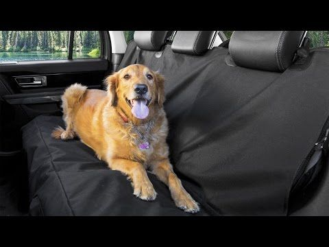 Top 5 Best Car Seat Covers for Dogs Best Seat Covers for Dogs Reviews