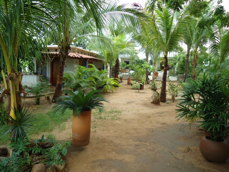 Puerto Escondido Tourism: 31 Things to Do in Puerto Escondido, Mexico | TripAdvisor