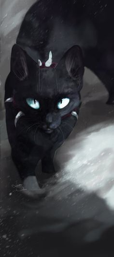 H-hello my name is IceBlood. I don't know why I chose evil but it happend. I'm considered a beautiful and secretive she-cat. I used to be a clan cat but... I don't need to talk about it.