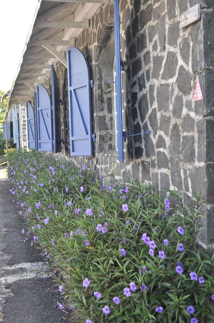 Still Life in Blue - Mauritius.