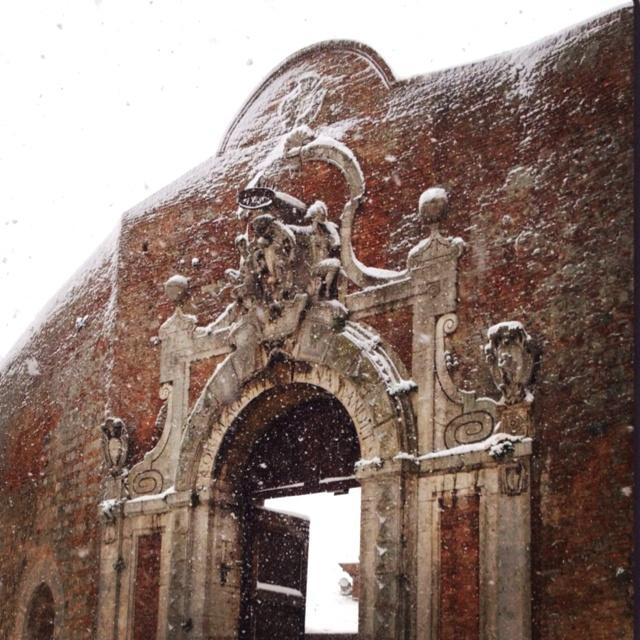 Porta Camollia @siena