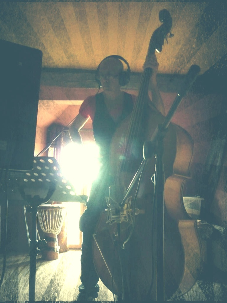 52 best Double Bass images on Pinterest Double bass, Music - double first