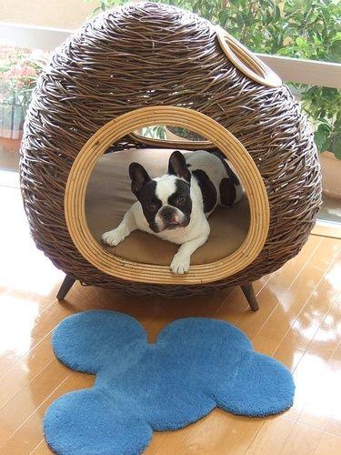 Cute doggie inside his cute dog house!