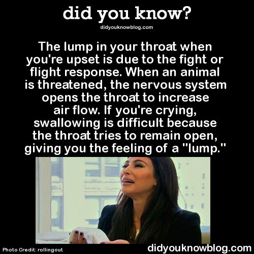 "The lump in your throat when you're upset is due to the fight or flight response. When an animal is threatened, the nervous system opens the throat to increase air flow. If you're crying, swallowing is difficult because the throat tries to remain open, giving you the feeling of a ""lump."""