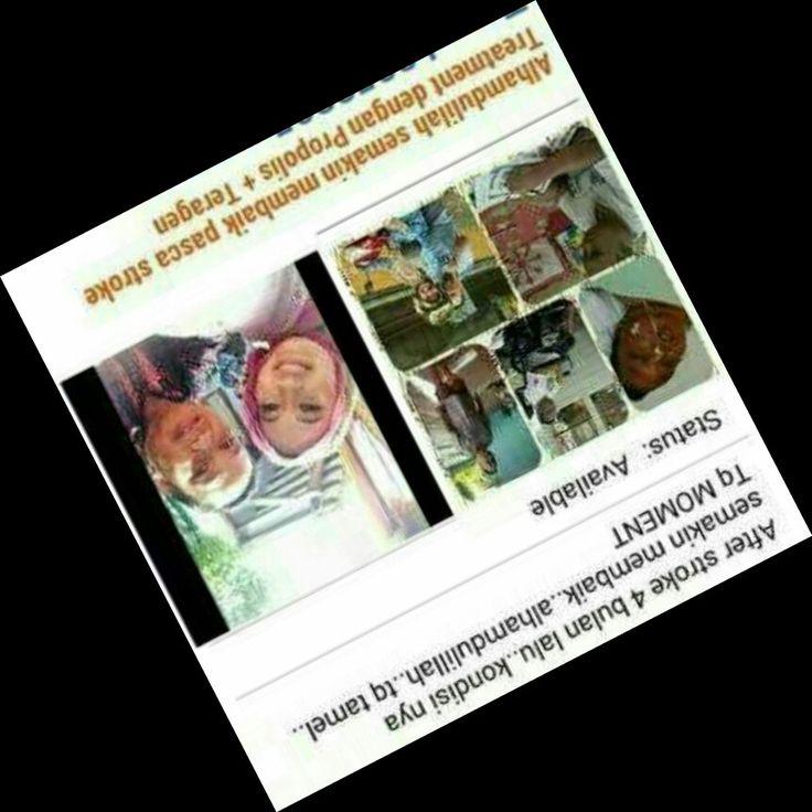www.markusandika.tk kesaksian sembuh dari stroke karena produk stemcell biocell apel dan propolis. Info: wa: 089637157149