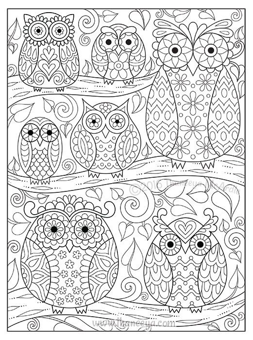 493 best Doodles and Coloring Pages images on Pinterest Doodles - copy baby owl coloring pages for adults