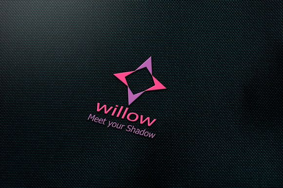 Willow logo Design by Conflutech Designs on Creative Market
