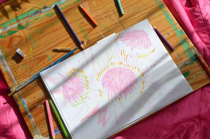 Leenykova: Proteas Illustration