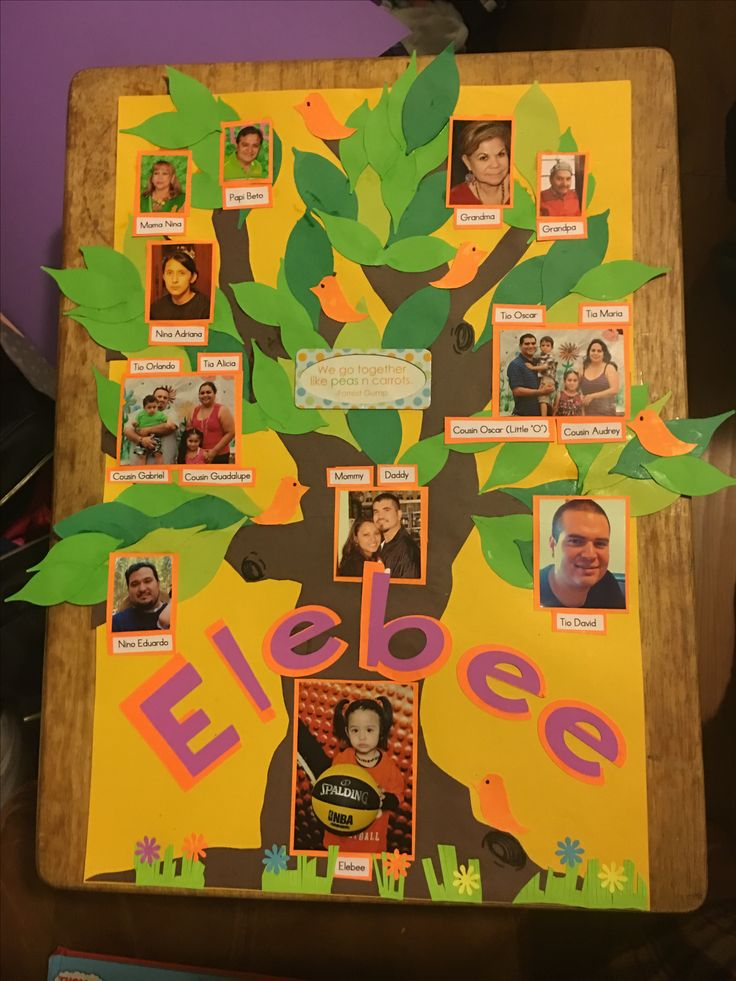 Family Tree Project Family Tree Ideas Pinterest